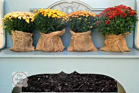 Outdoor Decorating For Fall The Shabby Nest Outdoor Fall Decor The Evolution Of This Years