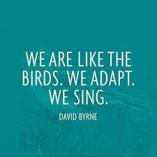 David Byrne Quotes. QuotesGram via Relatably.com