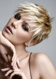 Hairstyle Gallery best 25 pixie haircut gallery ideas pics of short 7358 by stevesalt.us
