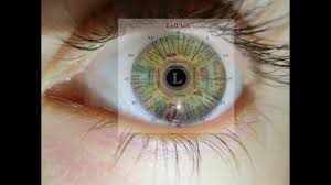 Reading Your Eyes With Iridology Easy Version