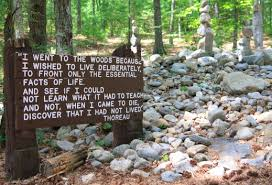 on civil disobedience and commonality between mohatma gandhi and  henry david thoreau s cabin site next to walden pond