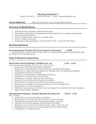 100 Bpo Resume Sample Resume Personal Interests Examples