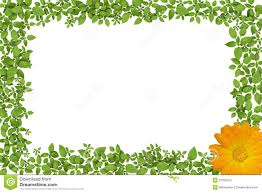 Green Plant Frame With Yellow Flowers Stock Illustration