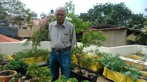 but it was a delay in the landing of his flight that made him a pioneer and a go to name when it comes to urban terrace gardening