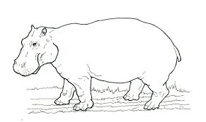 Small Picture African Animal Coloring Pages Hippo Printable Animal Coloring