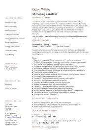 Resume Template Marketing Marketing Assistant Cv Sample