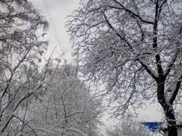 Картинки по запросу зима жашків
