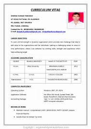 Professional Resume Format For Job Simple Resume Format For Freshers