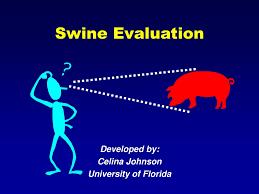 Developed by: Celina Johnson University of Florida - ppt download