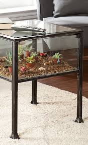 Terrarium End Table. Such a cool concept. Could do so many things with this