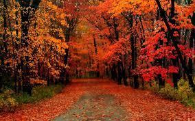 fall color tour peak dates best roads