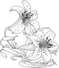 Small Picture Adult Coloring Pages On Coloring Pages Flower 15155