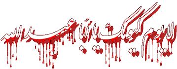 Image result for ?السلام عليك يا ابا عبدالله الحسين وعلى الارواح?