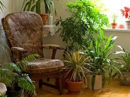 indoor gardening. Indoor Gardening Tips V