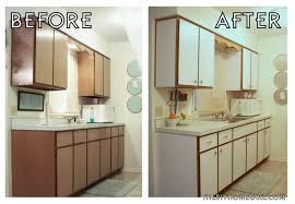 Diy Kitchen Makeover Contest Apartment Decor Diy The Flat Decoration