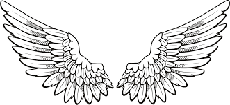 Angel Wings Vector Illustration Transparent Png Clipart Pictures