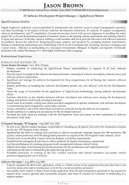 IT Software Development Project Manager IT Software Development Project Manager  Resume Example
