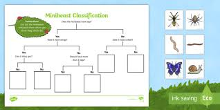 Animal Flow Chart Ks2 Minibeast Classification Game Minibeast Game Activity Sheet
