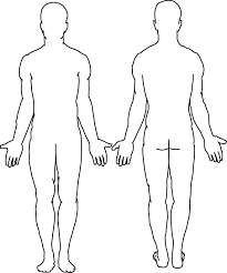 Body Injury Chart Body Diagram Form Diagram Schematic