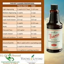 Thieves Oil Dilution How To Feng Shui Your Home For Better Balance
