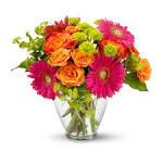 Pratt Florist   Flower Delivery by The Flower Shoppe