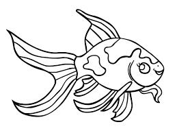 rainbow fish coloring page printable image drawn gold fish coloring page pencil and in color
