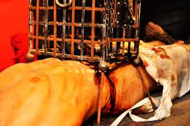 Top 10 Grisly Medieval Torture Methods Steemit