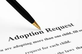 Adoption Birth Certificates Records Vitalchek Blog