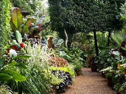 Small Picture 420 best Tropical Theme Garden In England images on Pinterest