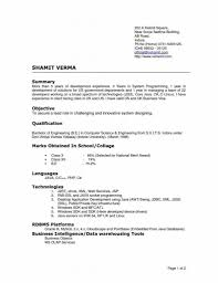 Examples Of Resumes Best Cv Format Resume 2015 Free Model