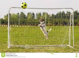 Αποτέλεσμα εικόνας για ποδοσφαιρο αστειο