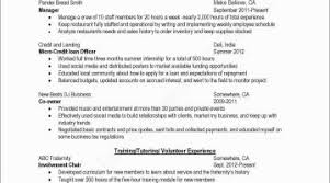 Professional Resume Examples 2017 Professional Resume Samples 2017