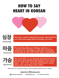 How To Say Heart In Korean Learn Basic Korean Vocabulary Phrases