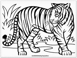 Small Picture Printable Tiger Color Sheet 45 For Your Gallery Coloring Ideas