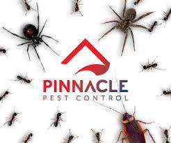 pinnacle pest control. Contemporary Pinnacle Termites Orange Oil With Pinnacle Pest Control E