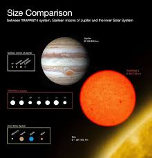 Seven Earth Sized Planets Found Orbiting Nearby Red Dwarf