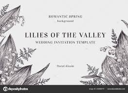 Vintage Background Lilies Valley Ferns Vector Botanical Illustration