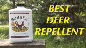 deer repellent for gardens. Brilliant Gardens Bobbex The Best Deer Repellent And How To Deal With Trolls  Wisconsin  Garden On For Gardens