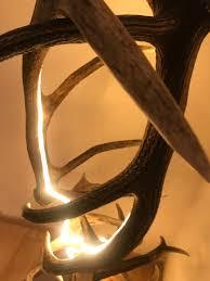 Design Stehlampe In 2019 Hirschgeweih Lampen Lampen Und
