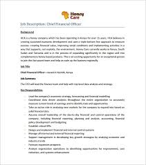 Chief Financial Officer Resumes Chief Executive Officer Resume Template 7 Free Word Excel Pdf