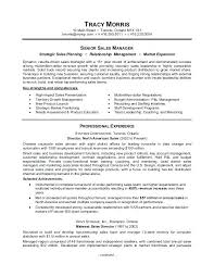 Monster Job Resume. best resume format examples best of monster .