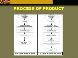 Sime Darby Plantation Organization Chart Sime Darby Plantation