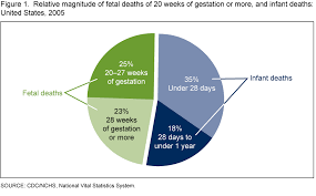 Stillbirth Rates By Week Chart Products Data Briefs Number 16 April 2009