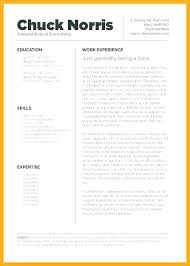 Free Resume Templates For Pages Beauteous Best Functional Resume Best Resume Template Pages Mac Resume Ate