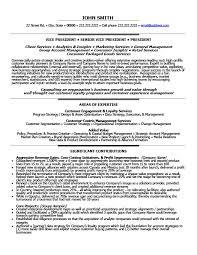 Senior Vice President Loyalty Resume Template Premium Resume