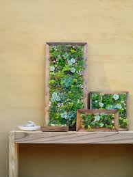 how to make your own succulent frame on live succulent wall art with how to make vertical succulent gardens sunset magazine