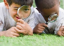 little detectives mystery books for 6 to 8 year olds