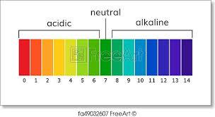 Ph Chart Alkaline Free Art Print Of Chart Ph Alkaline And Acidic Scale Vector
