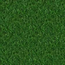 grass field texture. (GRASS 4) Seamless Turf Lawn Green Ground Field Texture Grass