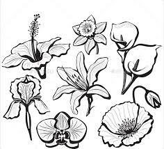 Flowers Templates 20 Flower Petal Templates Pdf Vector Eps Free